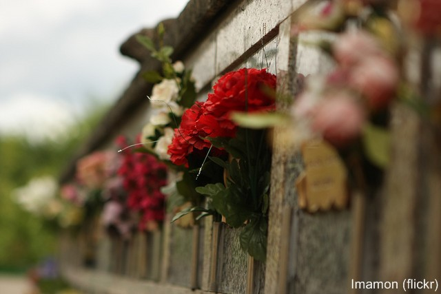 flores en lapidas - Imamon (flickr)