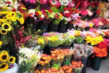 Flores por todos los Santos