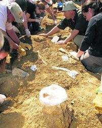 Cádiz derriba su viejo cementerio