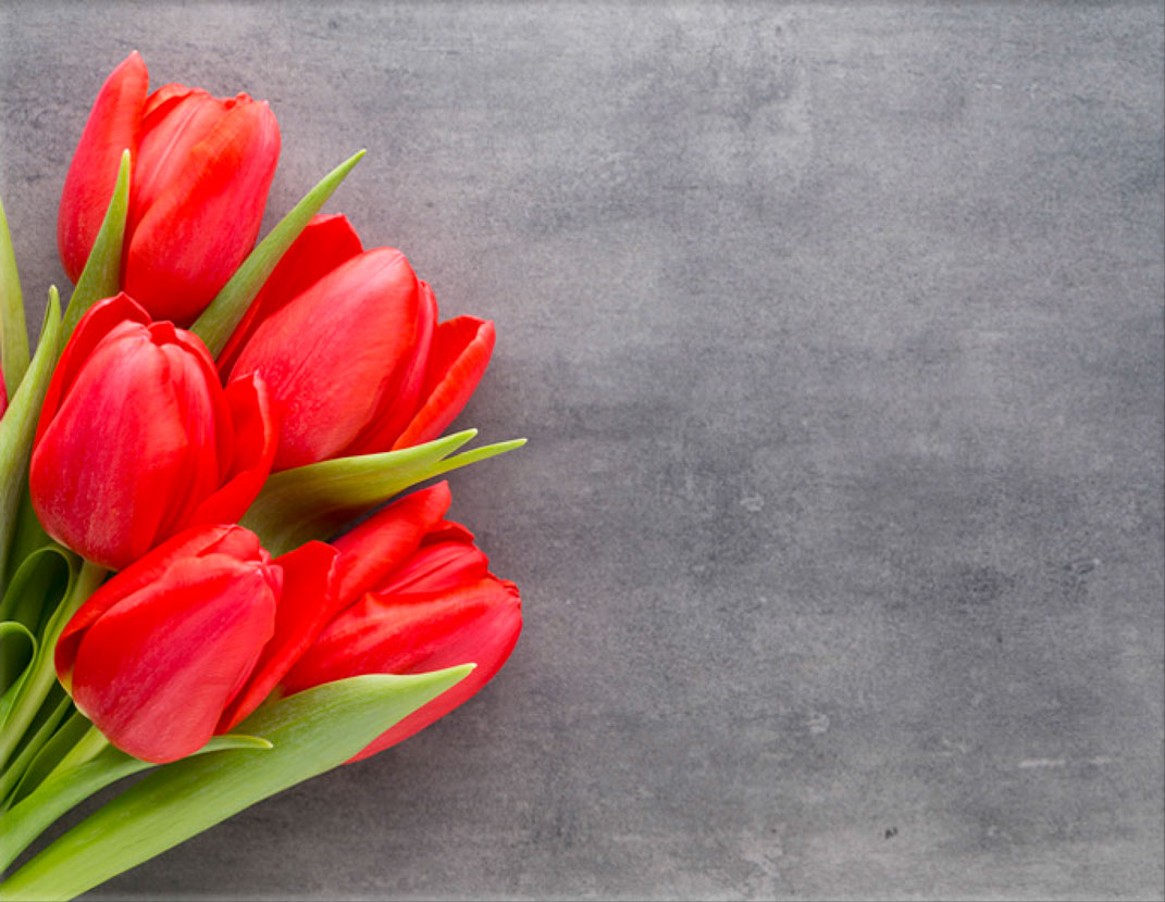 Lápida ColorFull Tulipanes 0239