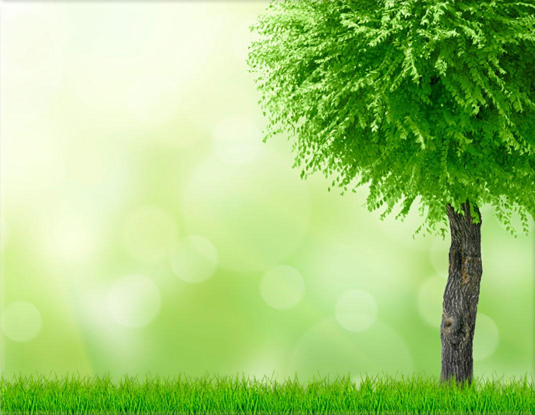 Lápida ColorFull naturaleza verde 3507