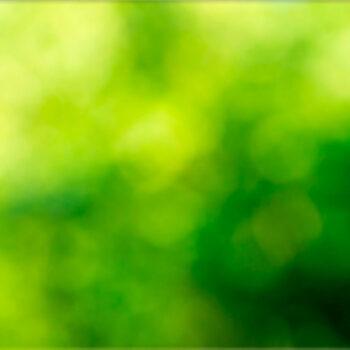 Lápida ColorFull composición verde 4083